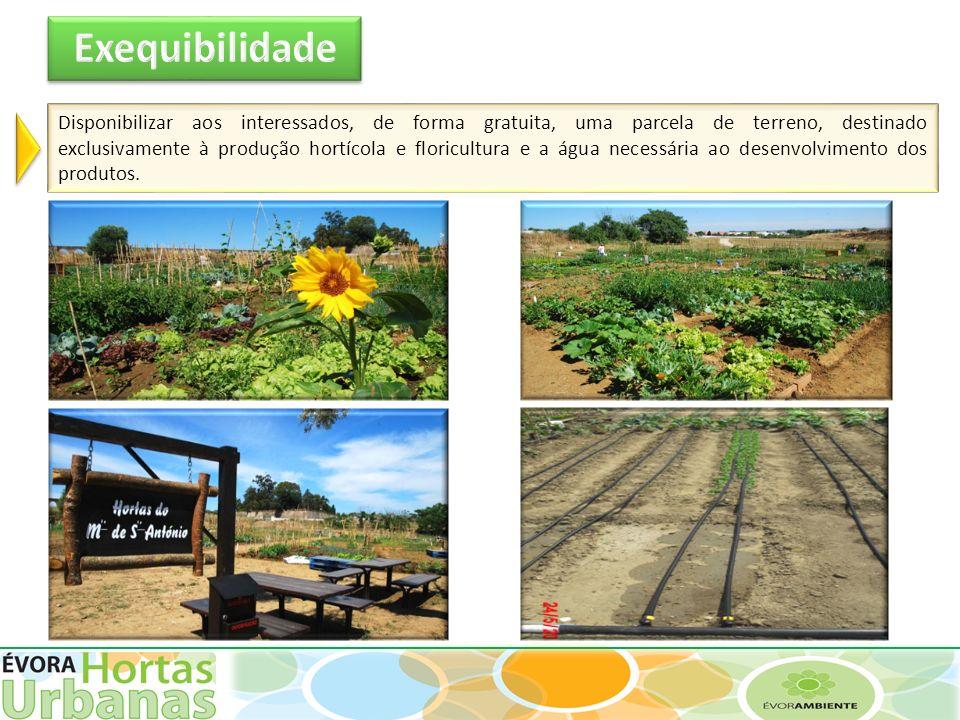 Disponibilizar aos interessados, de forma gratuita, uma parcela de terreno, destinado exclusivamente à produção hortícola e floricultura e a água nece