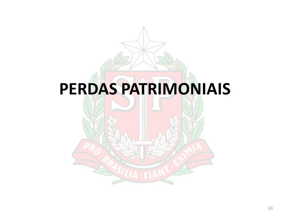 PERDAS PATRIMONIAIS 24