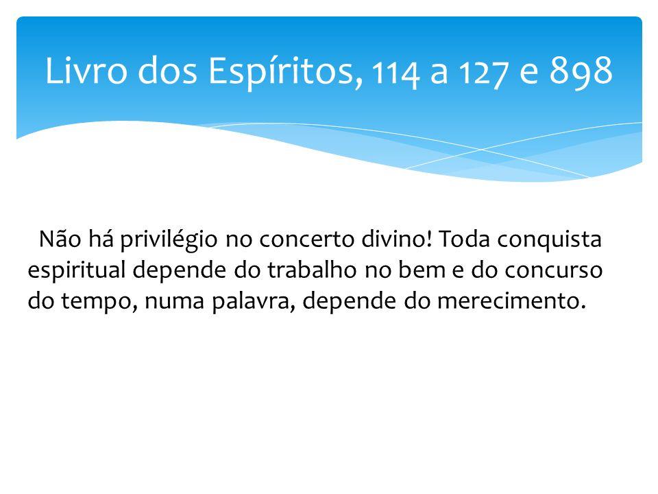 Livro dos Espíritos, 114 a 127 e 898 Não há privilégio no concerto divino! Toda conquista espiritual depende do trabalho no bem e do concurso do tempo