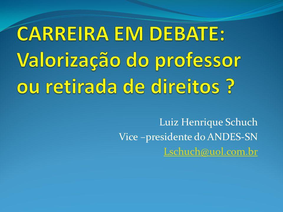 Luiz Henrique Schuch Vice –presidente do ANDES-SN Lschuch@uol.com.br