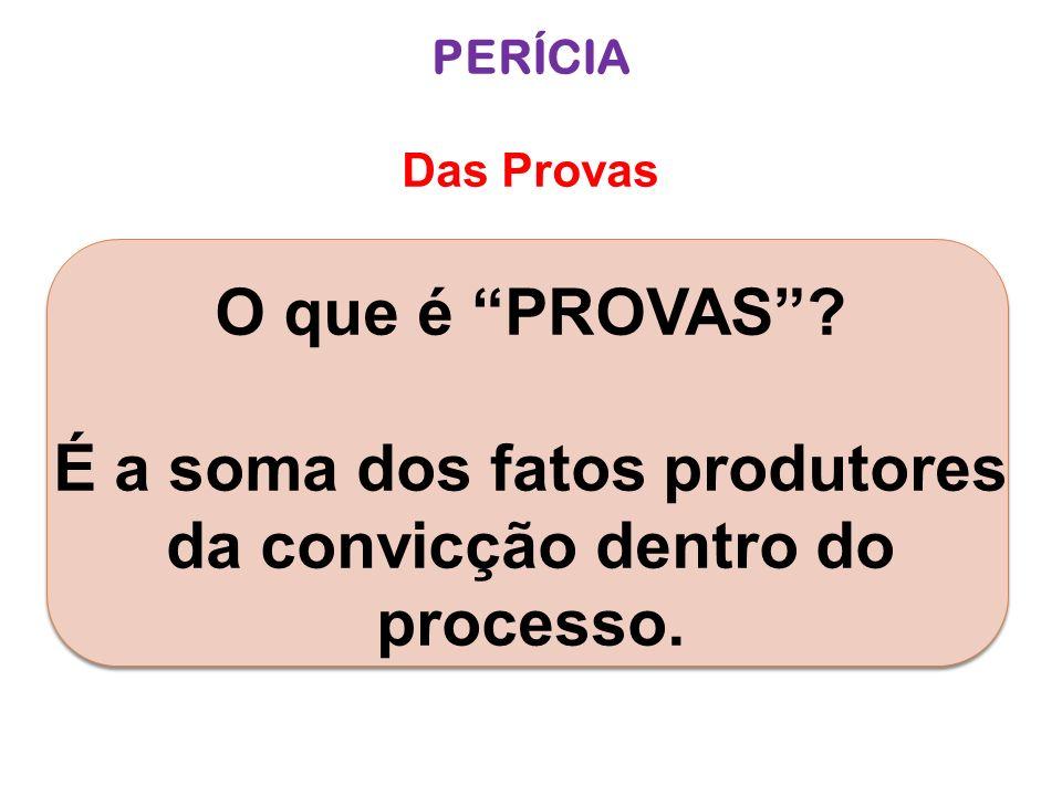 PERÍCIA Das Provas O que é PROVAS? É a soma dos fatos produtores da convicção dentro do processo.