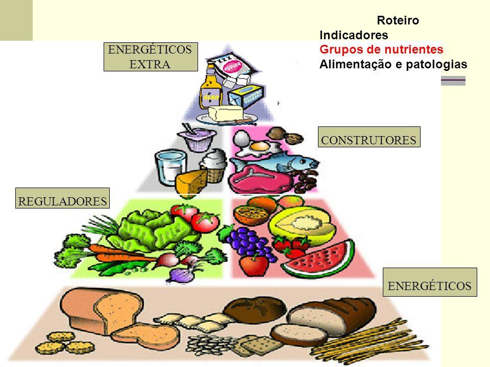 ENERGÉTICOS EXTRA CONSTRUTORES REGULADORES ENERGÉTICOS Roteiro Indicadores Grupos de nutrientes Alimentação e patologias