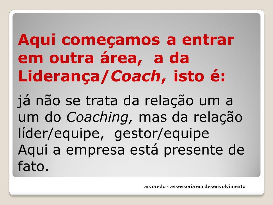 Aqui começamos a entrar em outra área, a da Liderança/Coach, isto é: já não se trata da relação um a um do Coaching, mas da relação líder/equipe, gest
