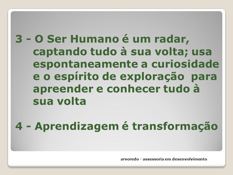 3 - O Ser Humano é um radar, captando tudo à sua volta; usa espontaneamente a curiosidade e o espírito de exploração para apreender e conhecer tudo à