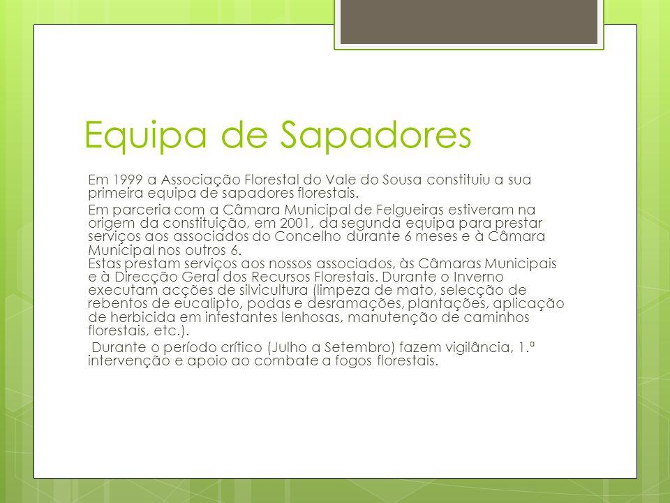 Equipa de Sapadores Em 1999 a Associação Florestal do Vale do Sousa constituiu a sua primeira equipa de sapadores florestais. Em parceria com a Câmara