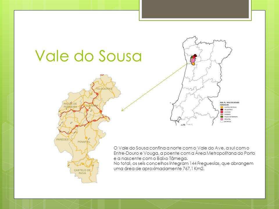Vale do Sousa O Vale do Sousa confina a norte com o Vale do Ave, a sul com o Entre-Douro e Vouga, a poente com a Área Metropolitana do Porto e a nasce