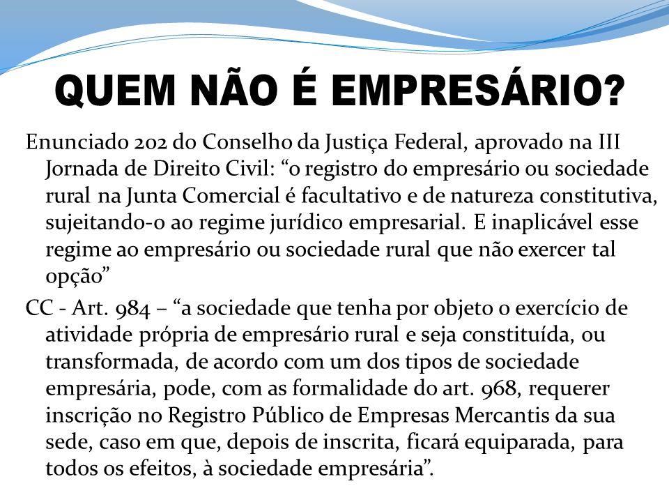 Enunciado 202 do Conselho da Justiça Federal, aprovado na III Jornada de Direito Civil: o registro do empresário ou sociedade rural na Junta Comercial