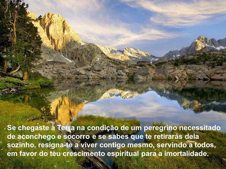 Deixa que a realidade te auxilie a visão e encontrarás a divina felicidade do anjo anônimo, que se confunde na glória do bem comum.