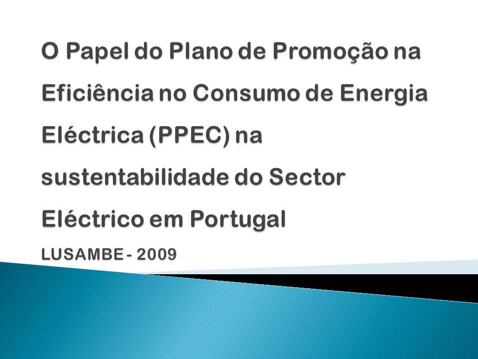 O sector eléctrico actualmente encontra-se a enfrentar inúmeros problemas e desafios, dentre eles, a sustentabilidade económico-ambiental.