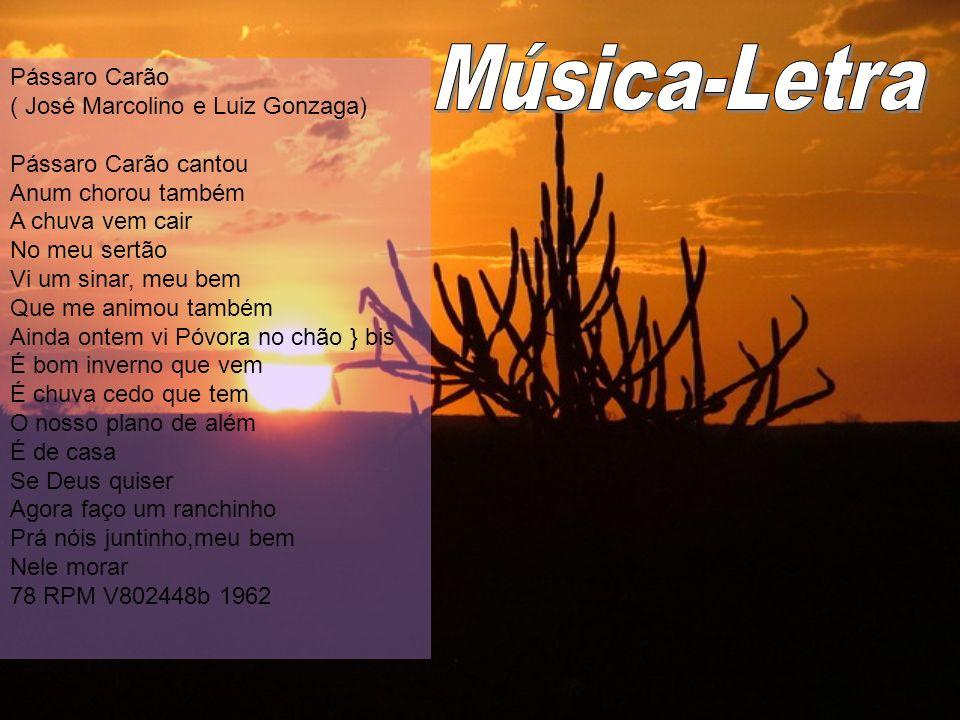 Pássaro Carão ( José Marcolino e Luiz Gonzaga) Pássaro Carão cantou Anum chorou também A chuva vem cair No meu sertão Vi um sinar, meu bem Que me anim