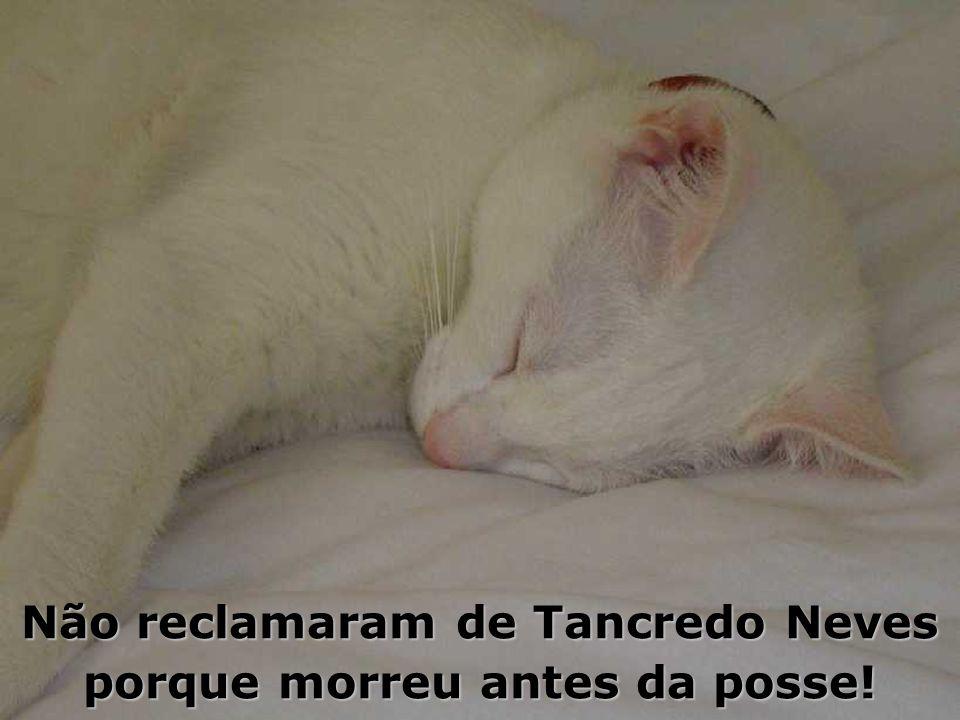 Reclamava dos presidentes da Velha República e da República Velha, dos militares, de Sarney, de Collor, de Itamar, de FHC, de Lula...