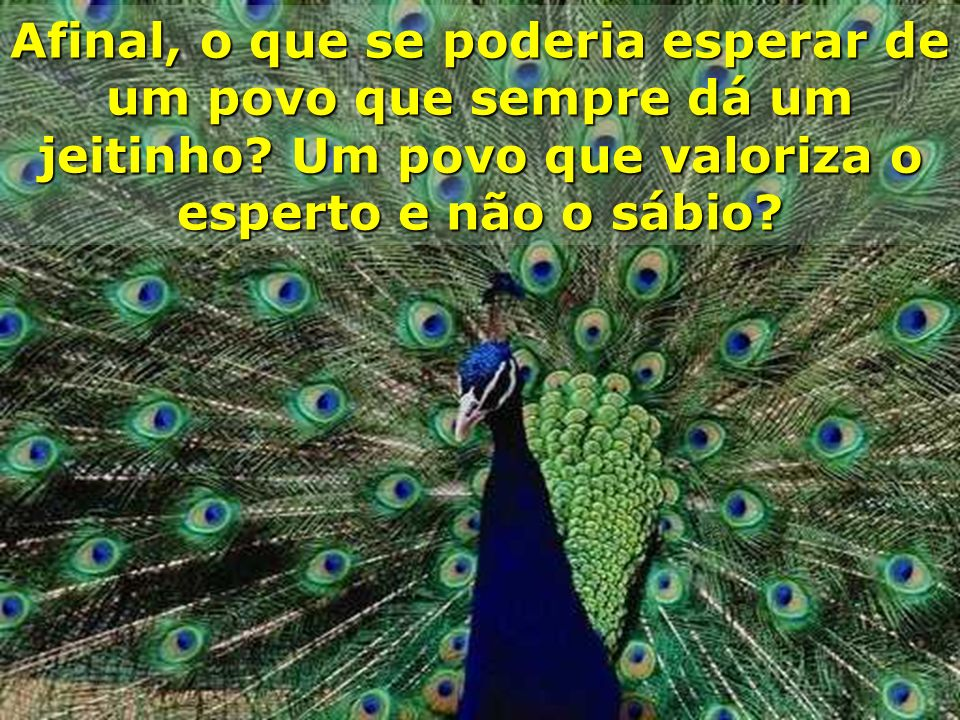 O problema está naquele que reclama: você e eu; nós! O problema está no brasileiro.