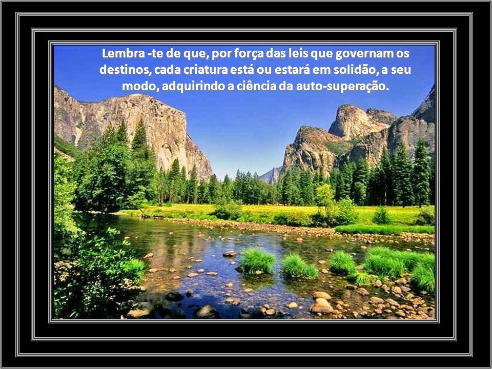 Aprende a ser só, para seres mais livre no desempenho do dever que te une a todos, e, de pensamento voltado para o Amigo Celeste, que esposou o caminho estreito da cruz.