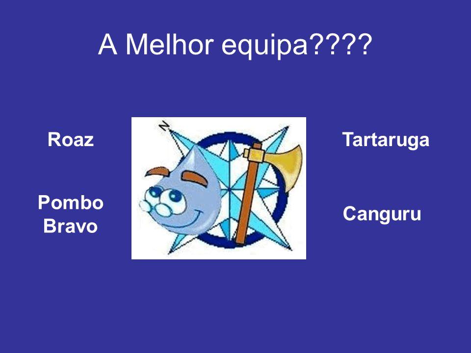 A Melhor equipa???? Roaz Pombo Bravo Tartaruga Canguru