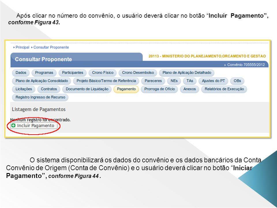 Após clicar no número do convênio, o usuário deverá clicar no botão Incluir Pagamento, conforme Figura 43. O sistema disponibilizará os dados do convê