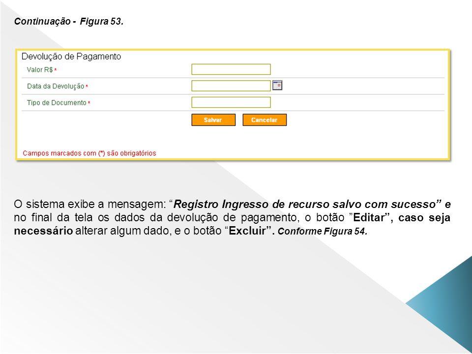 Continuação - Figura 53. O sistema exibe a mensagem: Registro Ingresso de recurso salvo com sucesso e no final da tela os dados da devolução de pagame