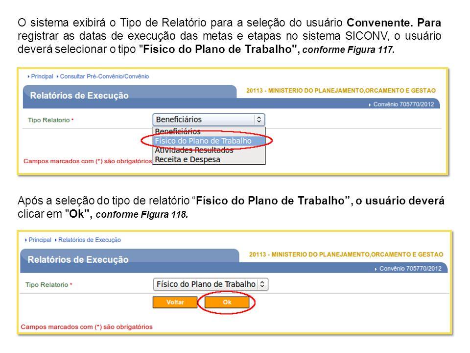 O sistema exibirá o Tipo de Relatório para a seleção do usuário Convenente. Para registrar as datas de execução das metas e etapas no sistema SICONV,