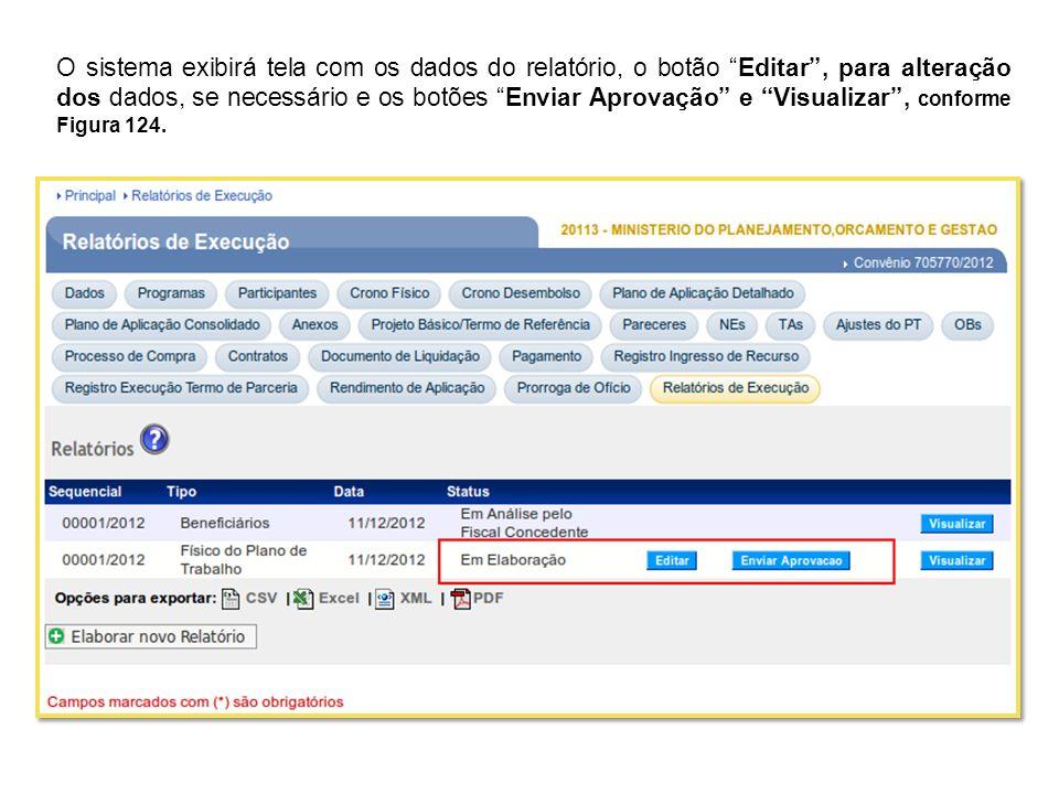 O sistema exibirá tela com os dados do relatório, o botão Editar, para alteração dos dados, se necessário e os botões Enviar Aprovação e Visualizar, c