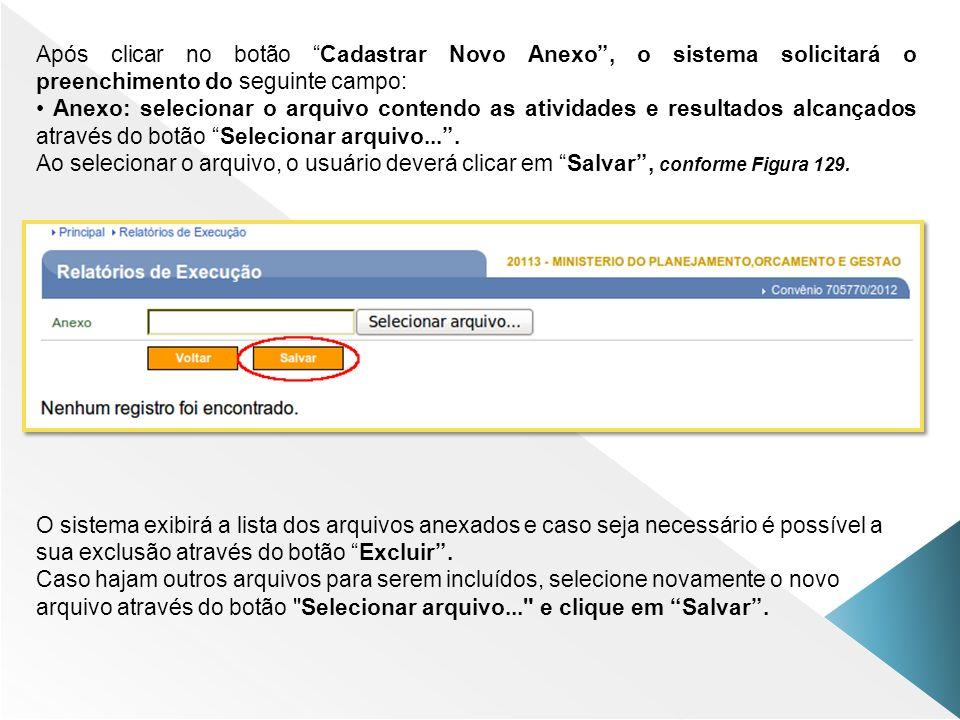 Após clicar no botão Cadastrar Novo Anexo, o sistema solicitará o preenchimento do seguinte campo: Anexo: selecionar o arquivo contendo as atividades
