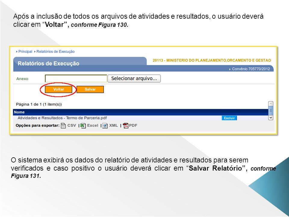 Após a inclusão de todos os arquivos de atividades e resultados, o usuário deverá clicar em Voltar, conforme Figura 130. O sistema exibirá os dados do
