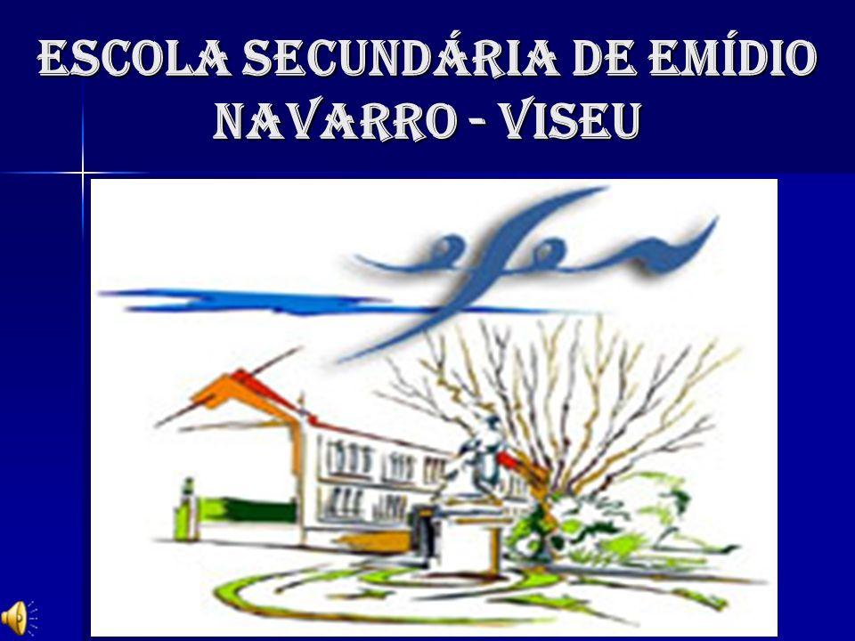 ESCOLA SECUNDÁRIA DE EMÍDIO NAVARRO - VISEU