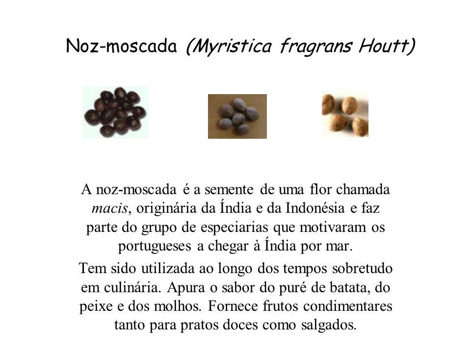 Noz-moscada (Myristica fragrans Houtt) A noz-moscada é a semente de uma flor chamada macis, originária da Índia e da Indonésia e faz parte do grupo de especiarias que motivaram os portugueses a chegar à Índia por mar.