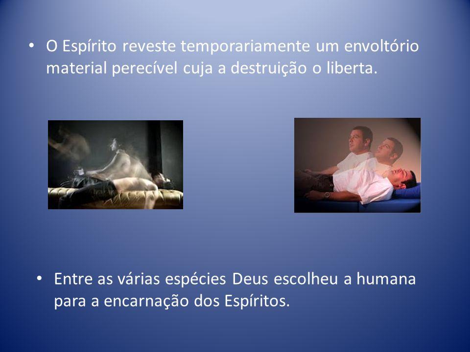 O Espírito reveste temporariamente um envoltório material perecível cuja a destruição o liberta.