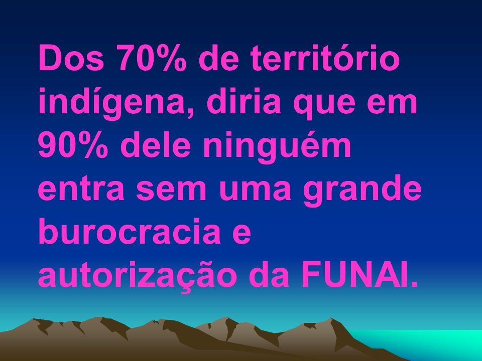 Dos 70% de território indígena, diria que em 90% dele ninguém entra sem uma grande burocracia e autorização da FUNAI.