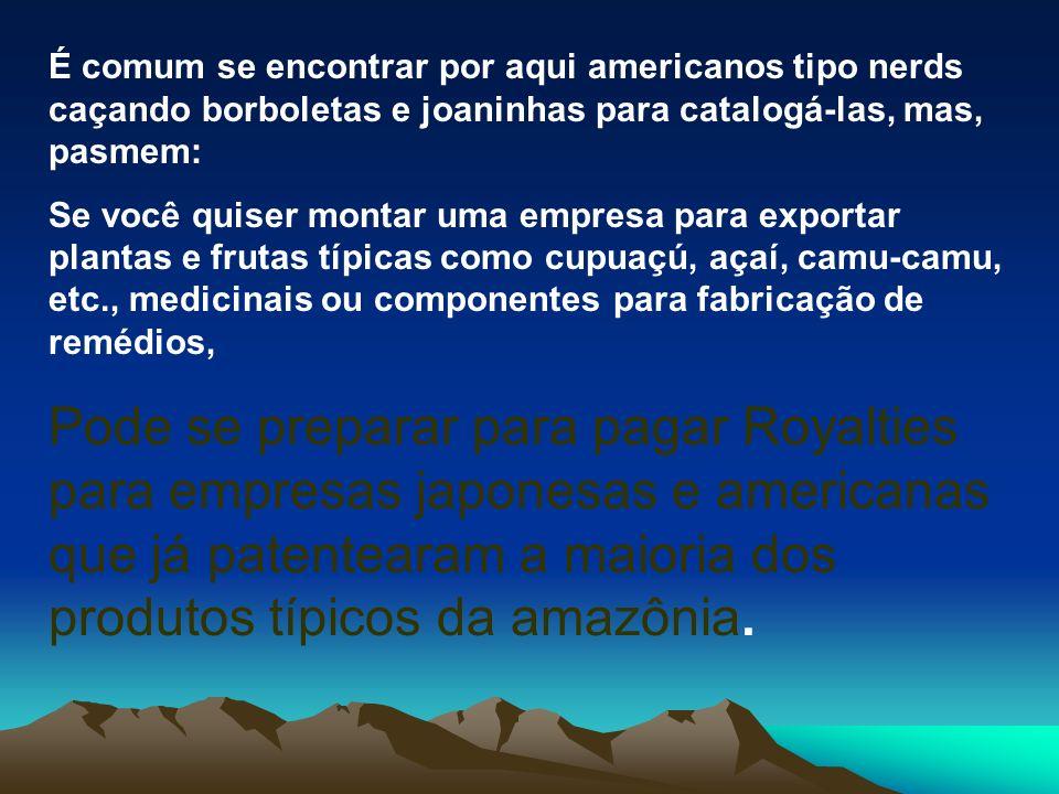 Por três vezes repeti a seguinte frase após ouvir tais relatos: É, os americanos irão acabar tomando conta da Amazônia.