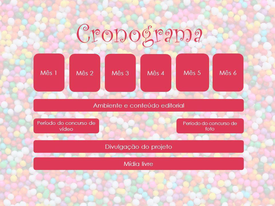 Divulgação do projeto Período do concurso de foto Ambiente e conteúdo editorial Mídia livre Cronograma Período do concurso de vídeo Mês 1 Mês 2Mês 3 M