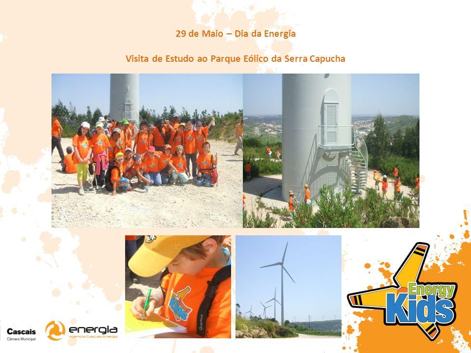 29 de Maio – Dia da Energia Visita de Estudo ao Parque Eólico da Serra Capucha