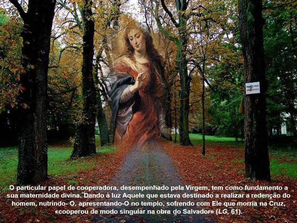 O particular papel de cooperadora, desempenhado pela Virgem, tem como fundamento a sua maternidade divina.