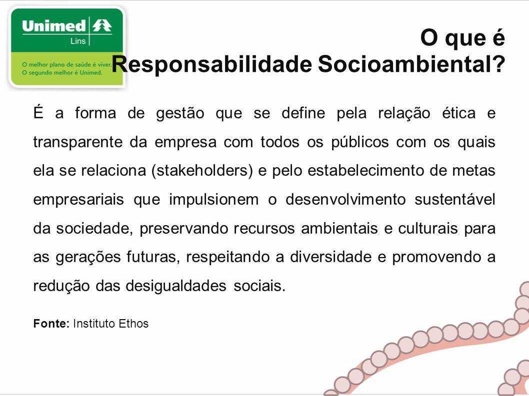 O que é Responsabilidade Socioambiental.