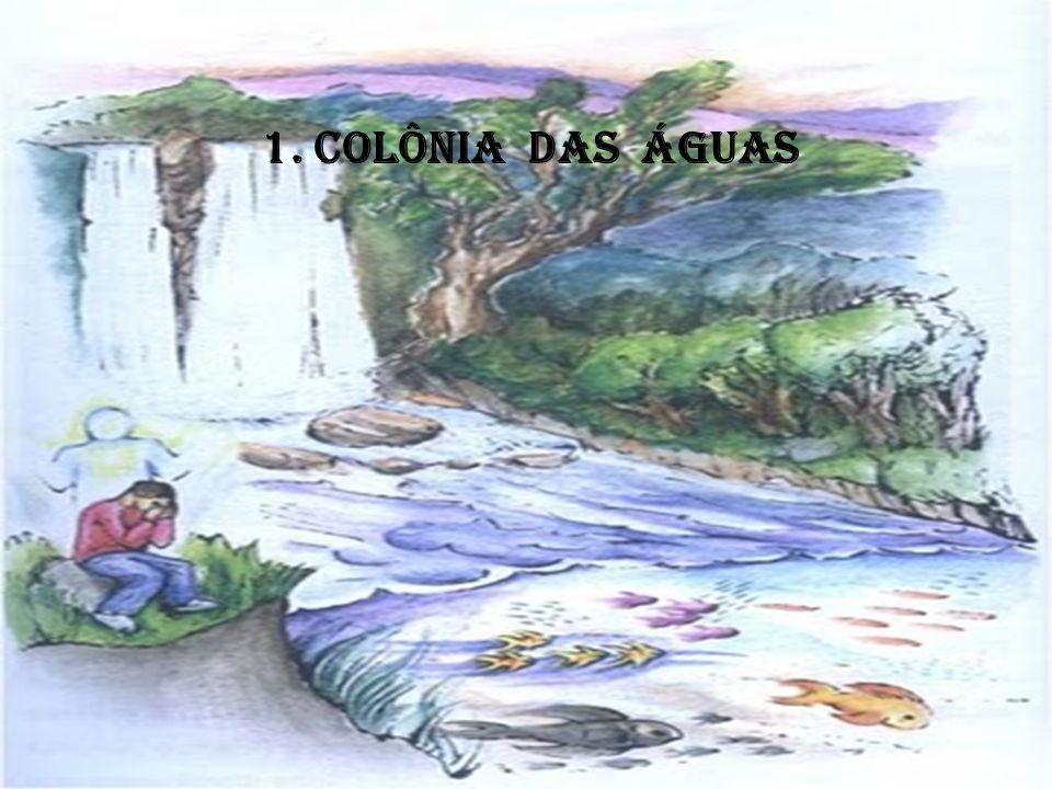 Colônias Espirituais no Brasil O que rege a formação das Colônias Espirituais é a Lei de Afinidade.