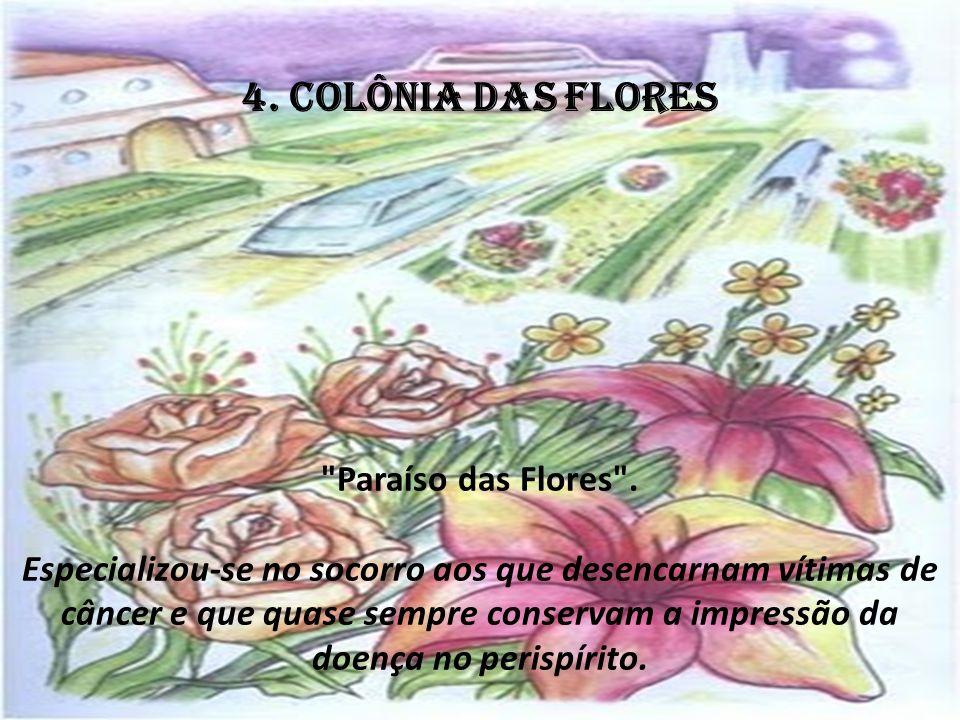 4.COLÔNIA DAS FLORES Paraíso das Flores .