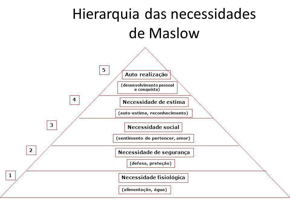 Hierarquia das necessidades de Maslow 1 Auto realização (desenvolvimento pessoal e conquista) Necessidade de estima (auto-estima, reconhecimento) Nece