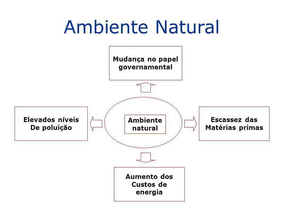 Elevados níveis De poluição Escassez das Matérias primas Aumento dos Custos de energia Mudança no papel governamental Ambiente natural Ambiente Natura