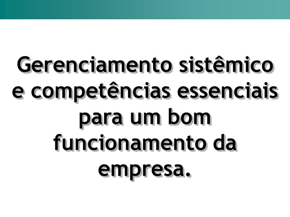 Gerenciamento sistêmico e competências essenciais para um bom funcionamento da empresa. Gerenciamento sistêmico e competências essenciais para um bom