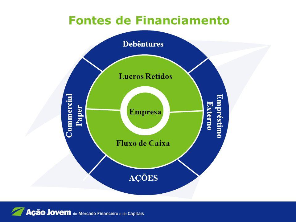 Fontes de Financiamento Empresa Lucros Retidos Fluxo de Caixa Debêntures Commercial Paper Empréstimo Externo AÇÕES