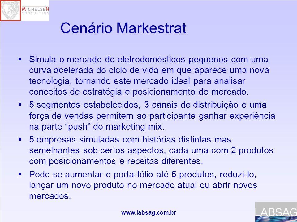 www.labsag.com.br Decisões cobertas Como organizar a equipe para conseguir uma administração mais eficiente.
