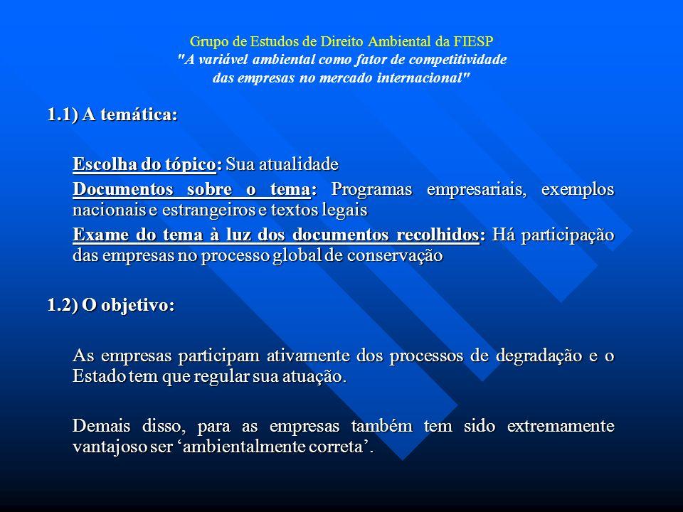 Grupo de Estudos de Direito Ambiental da FIESP A variável ambiental como fator de competitividade das empresas no mercado internacional Planejamento Ambiental A partir da década de 90, a auditoria ambiental, ou seja, o levantamento de dados ambientais preventivos, ganhou novos contornos.