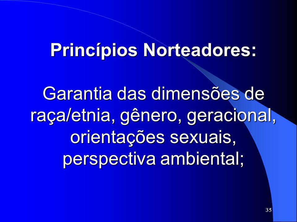 35 Princípios Norteadores: Garantia das dimensões de raça/etnia, gênero, geracional, orientações sexuais, perspectiva ambiental;