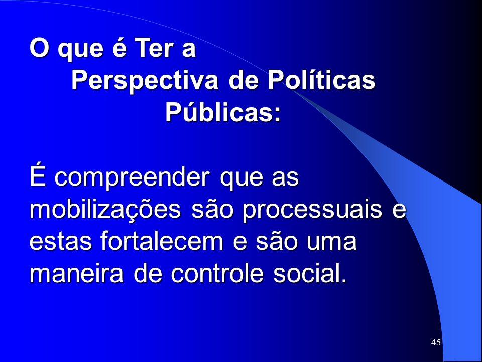 45 O que é Ter a Perspectiva de Políticas Públicas: É compreender que as mobilizações são processuais e estas fortalecem e são uma maneira de controle