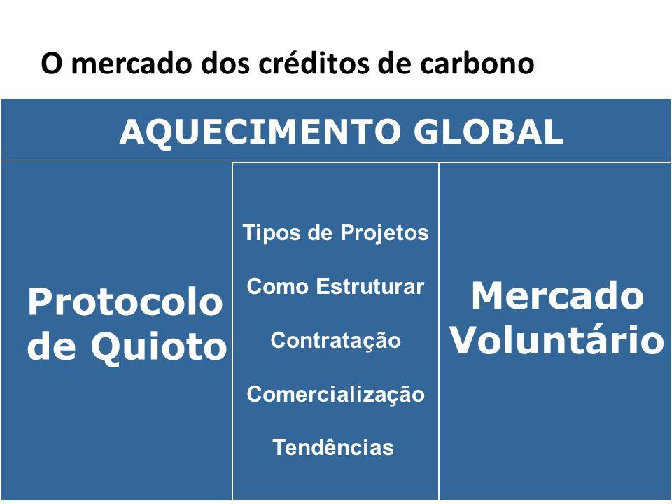 O mercado dos créditos de carbono Protocolo de Quioto Mercado Voluntário Tipos de Projetos Como Estruturar Contratação Comercialização Tendências AQUE