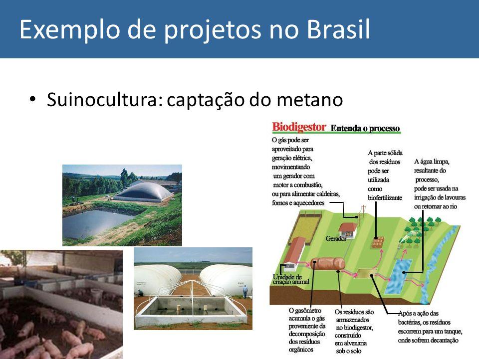 Exemplo de projetos no Brasil Suinocultura: captação do metano