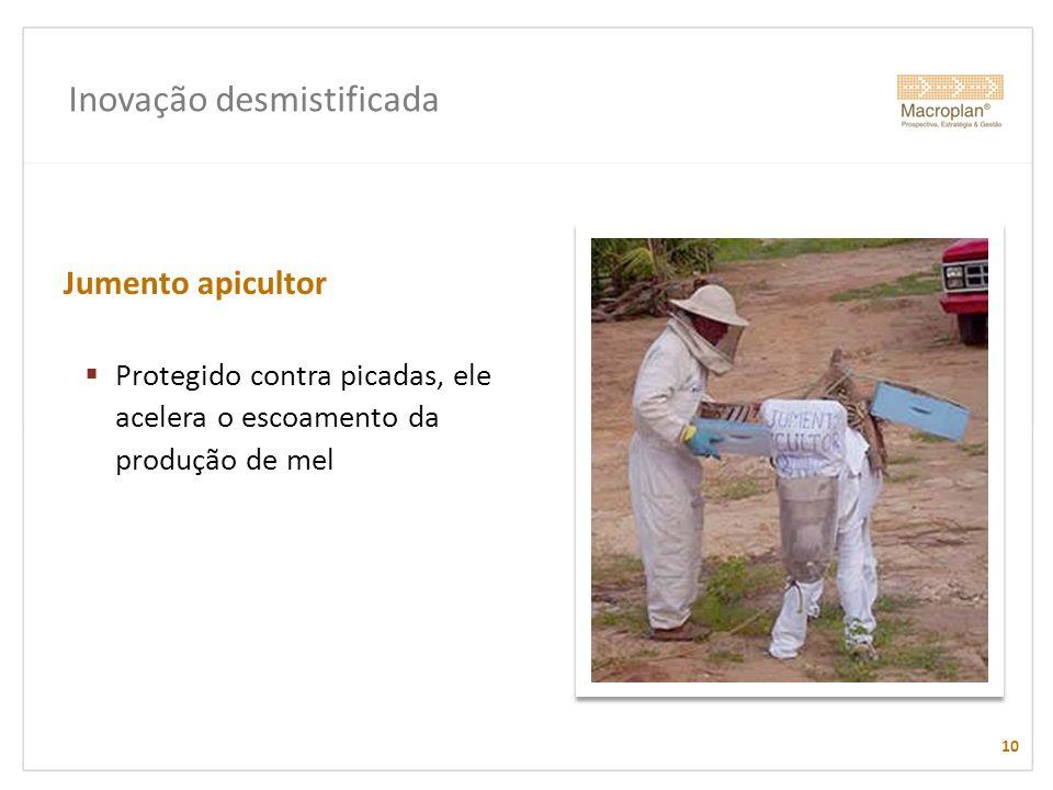 Inovação desmistificada Jumento apicultor Protegido contra picadas, ele acelera o escoamento da produção de mel 10