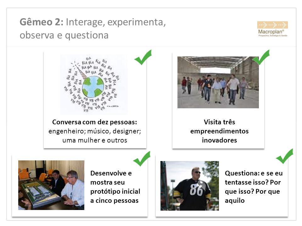 Gêmeo 2: Interage, experimenta, observa e questiona Conversa com dez pessoas: engenheiro; músico, designer; uma mulher e outros Desenvolve e mostra se