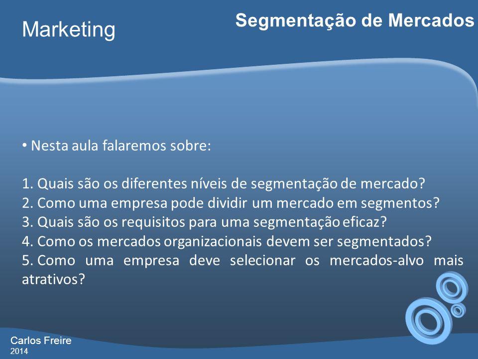 Carlos Freire 2014 Marketing Segmentação de Mercados Nesta aula falaremos sobre: 1. Quais são os diferentes níveis de segmentação de mercado? 2. Como