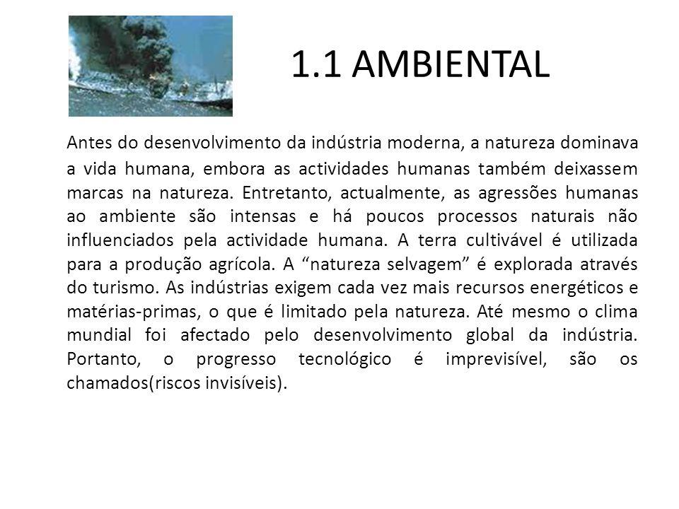 1.1 AMBIENTAL Antes do desenvolvimento da indústria moderna, a natureza dominava a vida humana, embora as actividades humanas também deixassem marcas