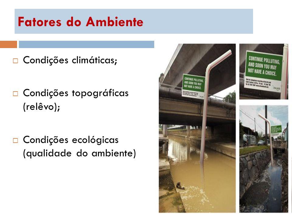 Fatores do Ambiente Condições climáticas; Condições topográficas (relêvo); Condições ecológicas (qualidade do ambiente)
